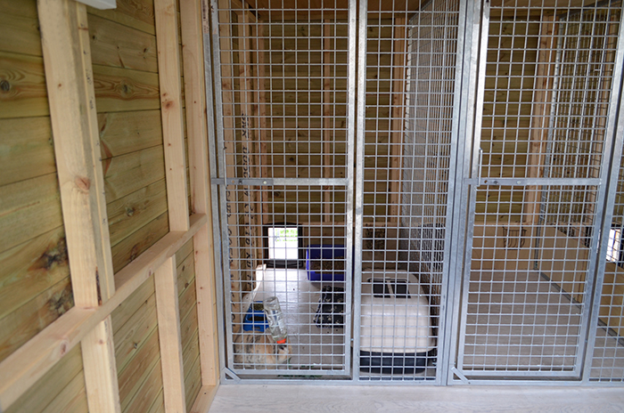 Luxury Accommodation for your outside bunny